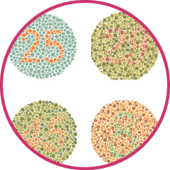 Colour Blindness Test